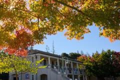 Fall arrives at Menlo School. Photo by Cyrus Lowe.