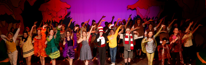 Menlo Middle School's stage performance of Seussical. Photo by Cyrus Lowe.